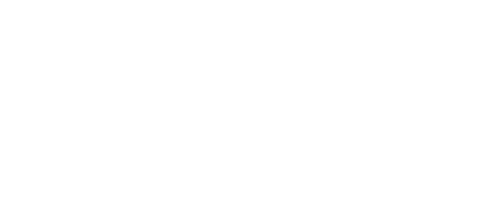 libre-network-decideurs-logo
